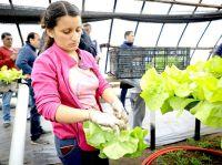 Se prorroga la inscripción para ser parte de 'RGA Agro Productiva'
