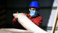 Para analistas la recuperación del empleo será una de las claves en 2021